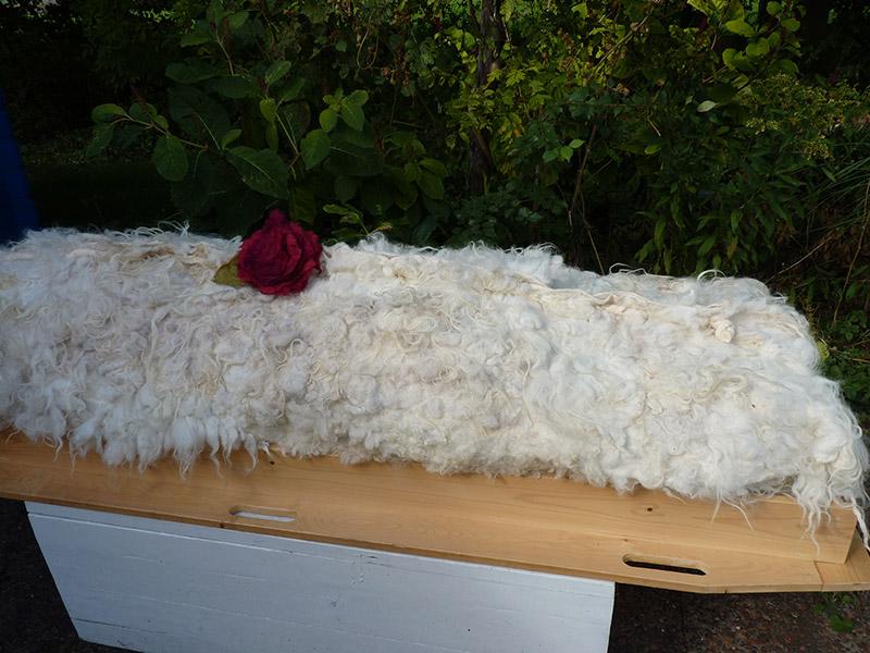 Begraven of cremeren in een natuurlijke, met de hand wol gevilte cocon